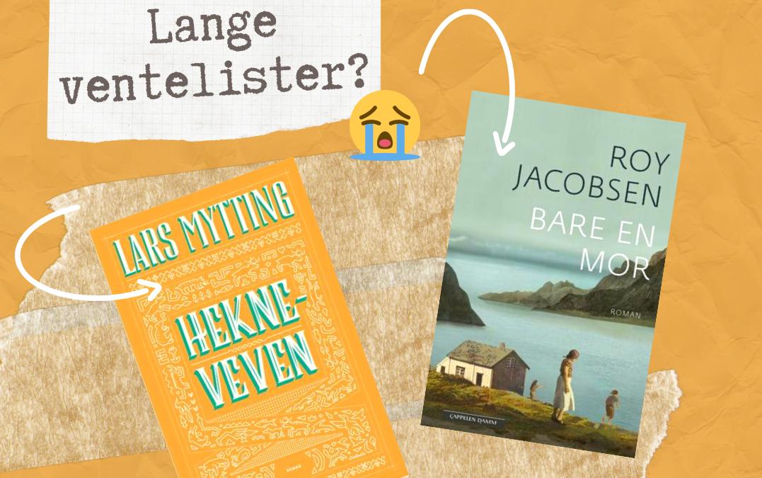 Har du lest «Hekneveven» og «Bare en mor» vil du kanskje like desse bøkene?